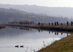 Parenzana landscape