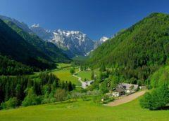The green Logarska valley