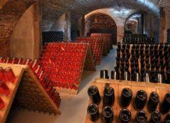 Wine Cellar, Slovenia