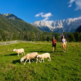 Senderismo por Vía Alpina, Eslovenia