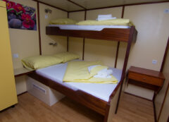 Standard category ship - triple cabin