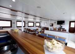 Standard category ship - restaurant