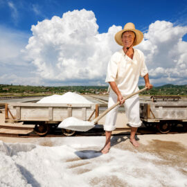 sea salt harvesting in Slovenia